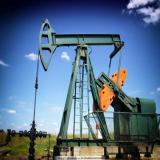 Drilling Frac Pump Bearing Mud Pumps 254941QU Bearings